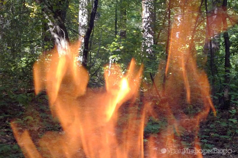 Граждан Усть-Катава просят посодействовать воперации потушению лесного пожара