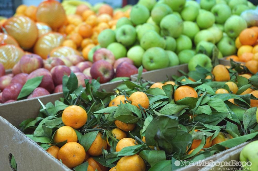 Российская Федерация назвала дату снятия запрета напоставки овощей ифруктов изЕгипта