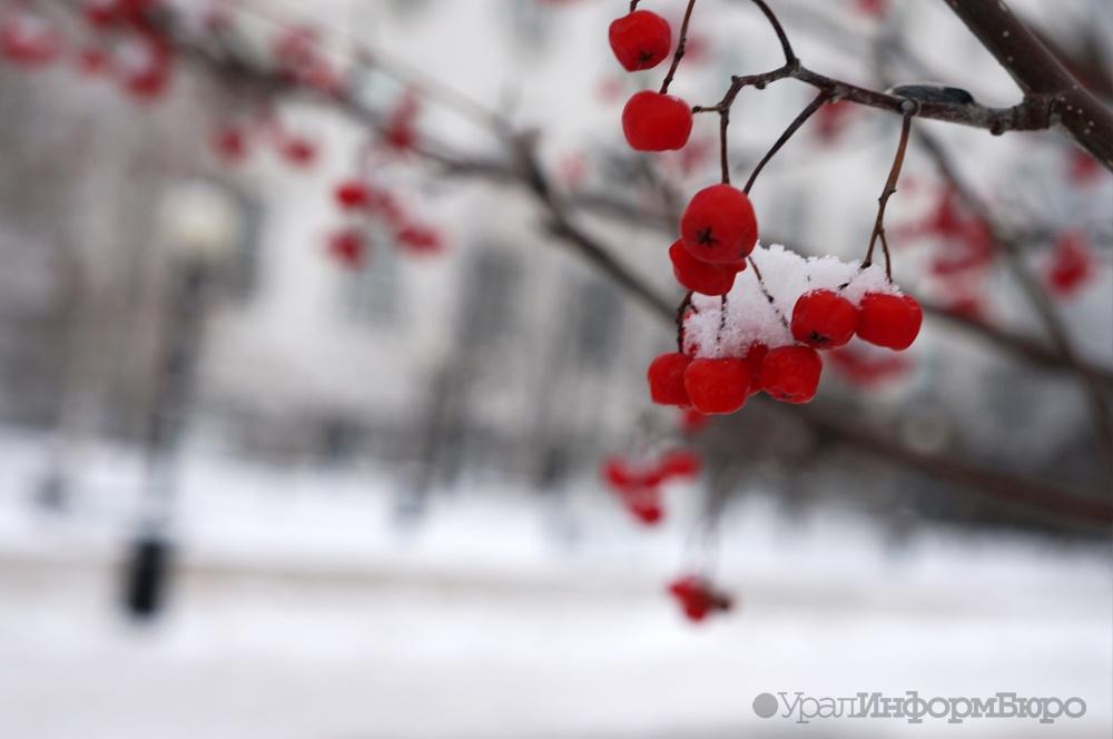 Синоптики продлили штормовое предупреждение— Средний Урал замерзает