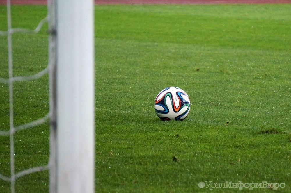 Настадионе «Зенита» начали срезать газон