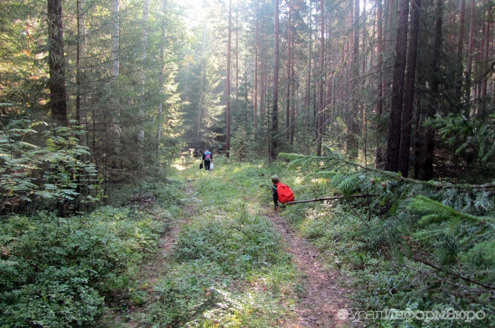 Появились детали исчезновения 15 туристов вБелорецком районе