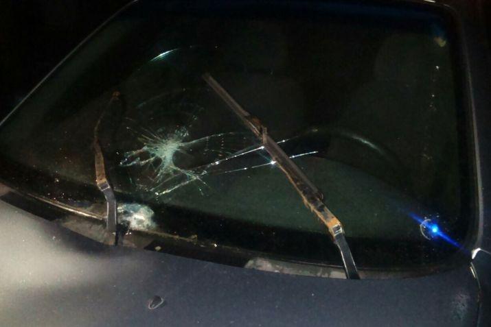 Насвердловской трассе под колесами иномарки погибла женщина Сегодня в08:06