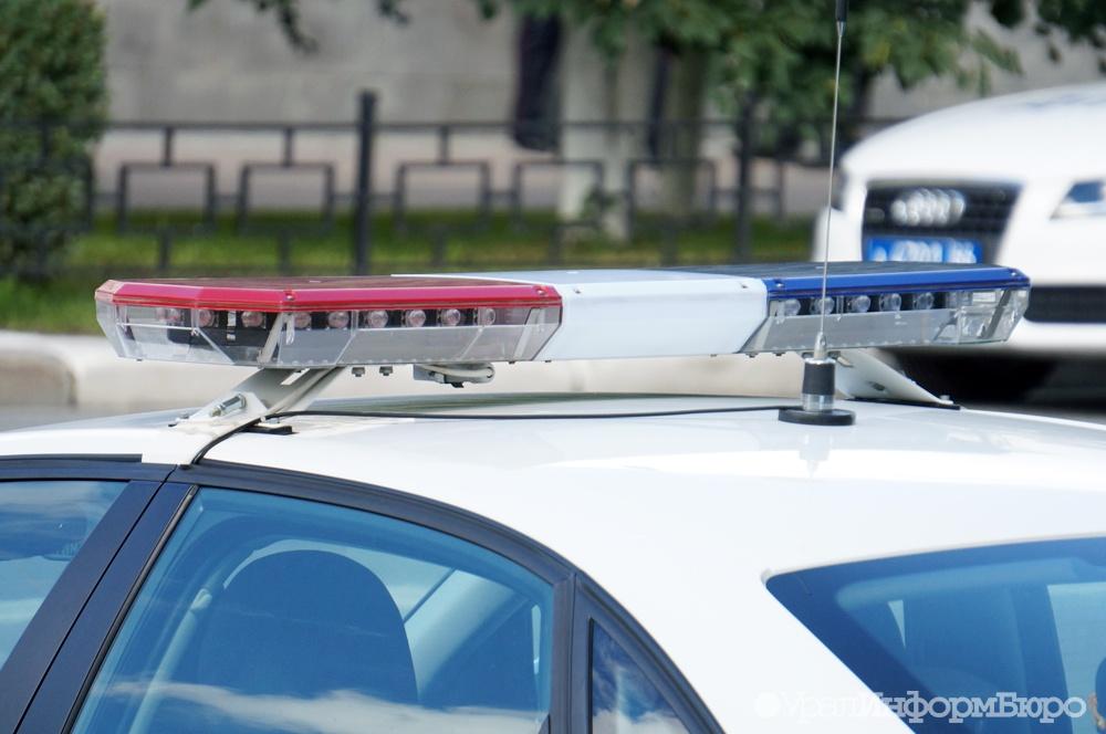 ВСША две группы полицейских устроили стрельбу , приняв друг дружку  за злоумышленников