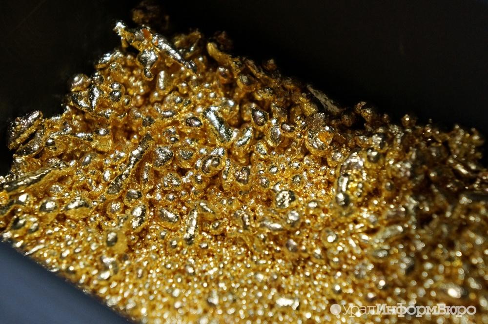 ВНевьянске приостановлена незаконная добыча золота