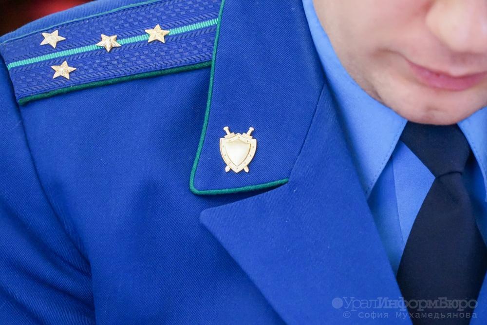После скандала вЧелябинске генпрокуратура проверит все детдома иинтернаты УрФО