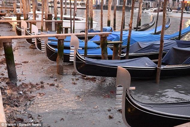 В «городе неводе» пересохли каналы— Венеция стала сухопутной