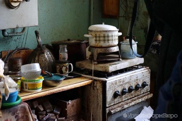 Вцентре Екатеринбурга расчистили квартиру, доверху набитую мусором итараканами