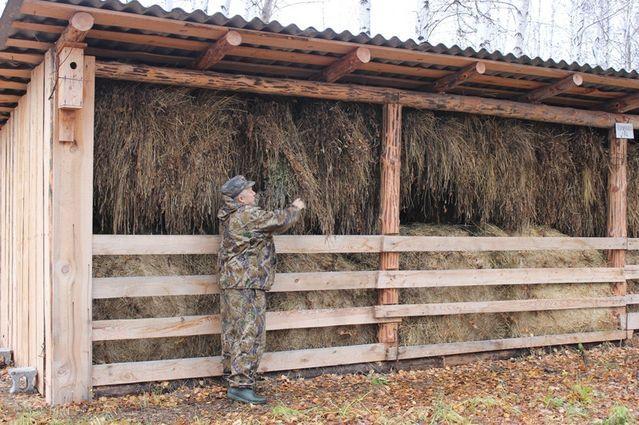 фото хранилище для сена своими руками фото выделяют четыре степени