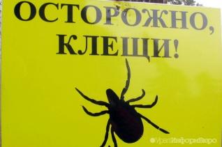 На Южном Урале первым от укуса клеща пострадал пастух